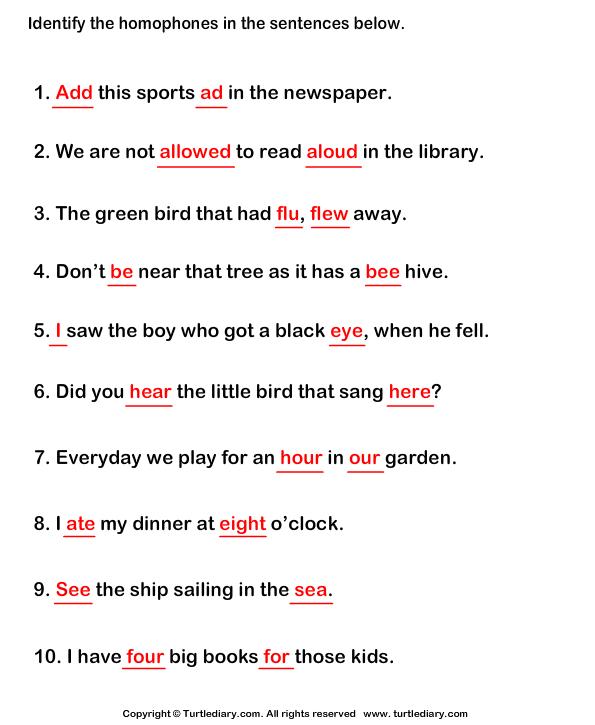 identify homophones english worksheets sentences grade 1. Black Bedroom Furniture Sets. Home Design Ideas