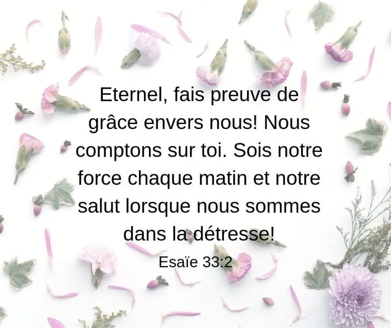 Eternel Notre Salut 1001 Versets Citations Bibliques Versets Chretiens Paroles De Jesus