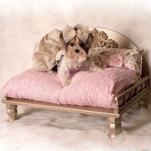 The Bethany Dog Daybed Designer Dog Beds Luxury Dog Dog Furniture