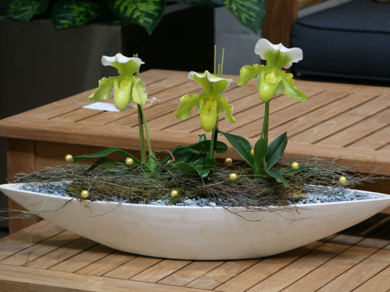 Innenbegrünung by Bacher Outdoor Living   Bacher Garten ...