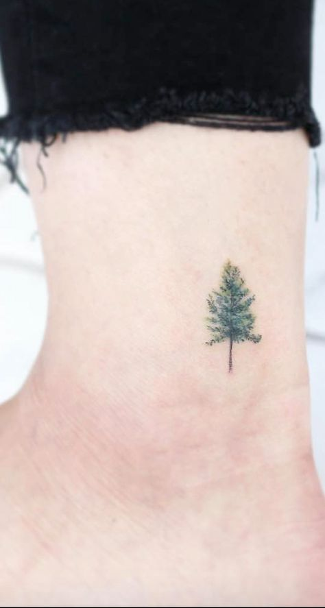 Photo of Super Evergreen Tree Tattoo Signification de 39 idées simples