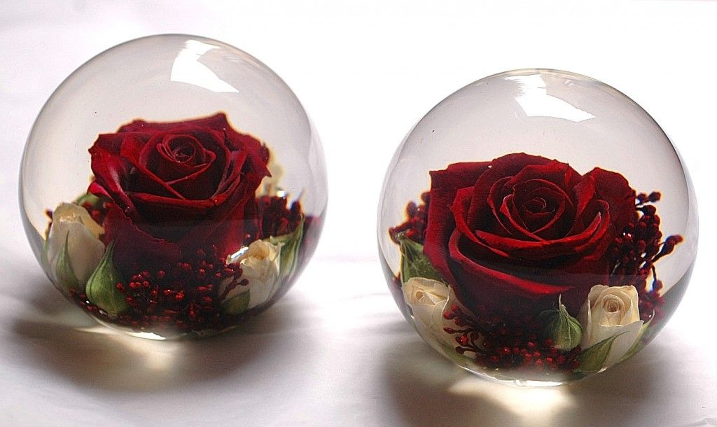 how to preserve a rose in resin