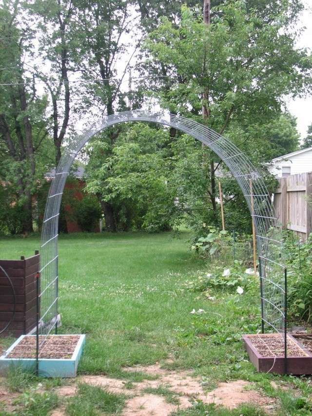 Beau Beans On One Side And Cucumbers On The Other; Or Any Easy Climber Vine For  That Matter! Cheap And Easy DIY Garden Arch!