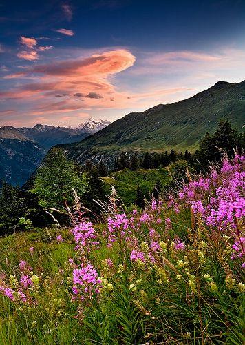 ..Swiss Alps - Balalp: Mountain Charm..