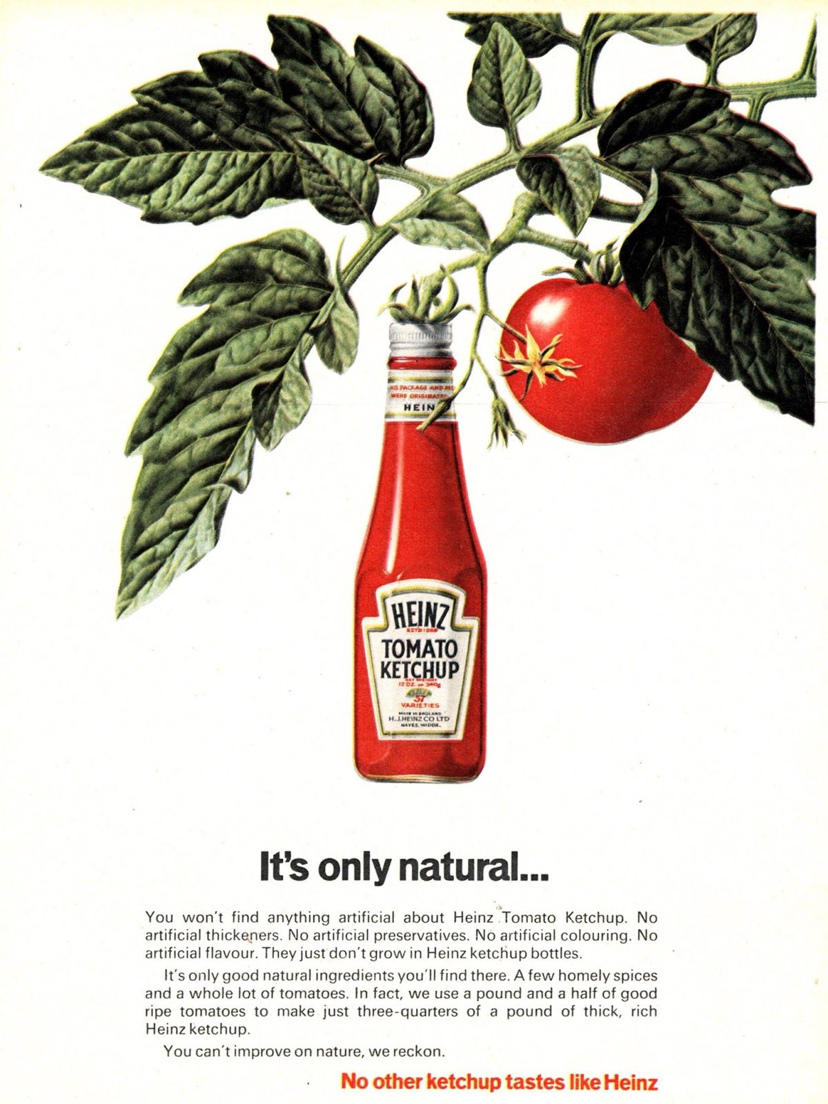 Image result for heinz is what ketchup tastes like ad