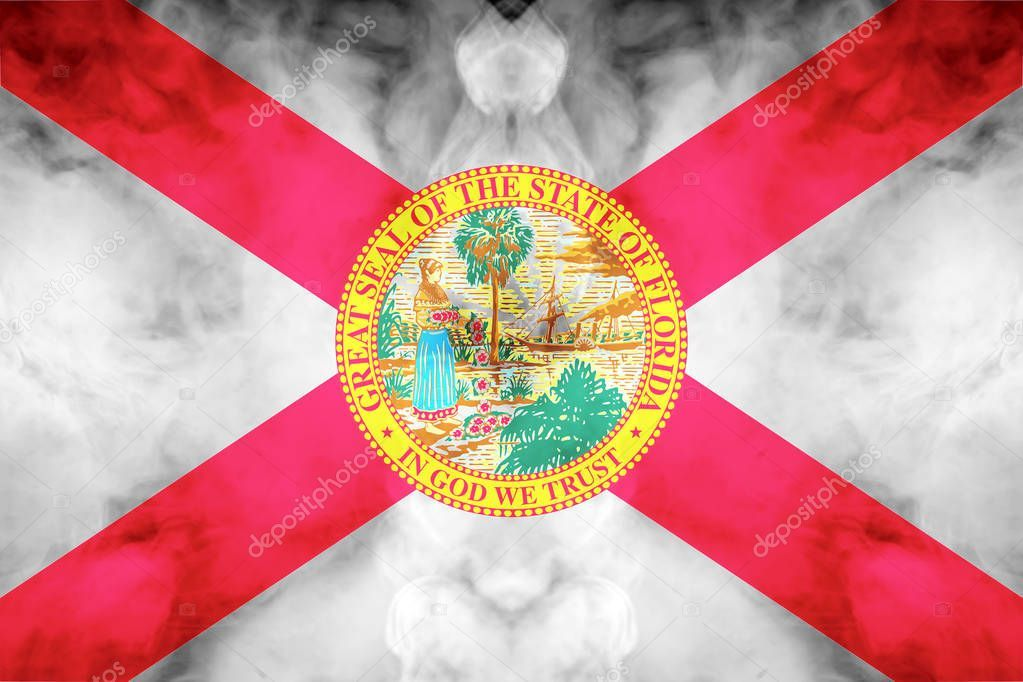 Let It Fly Florida S State Flag In God We Trust Civil War Flags War Flag Florida State Flag