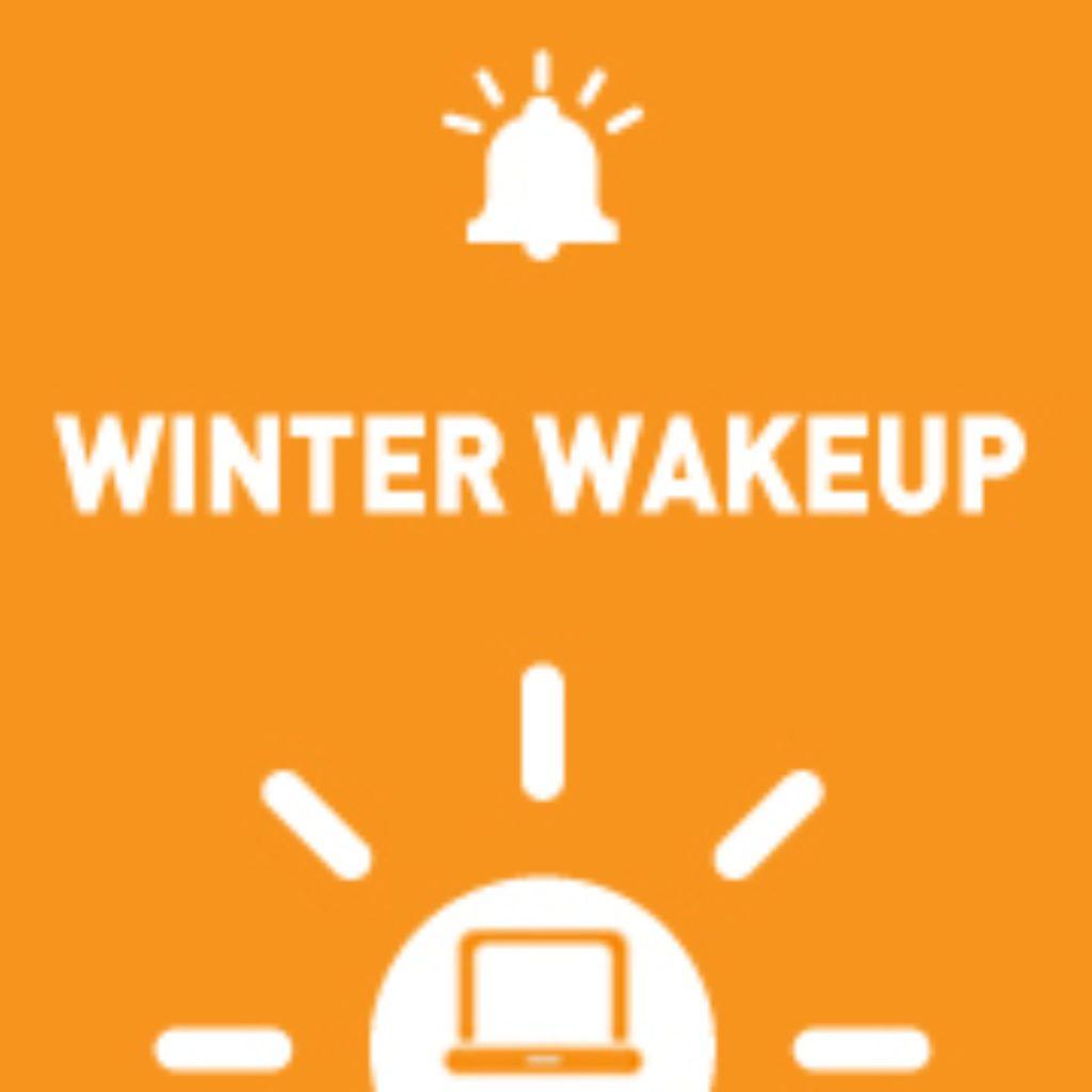 WinterWakeupButton