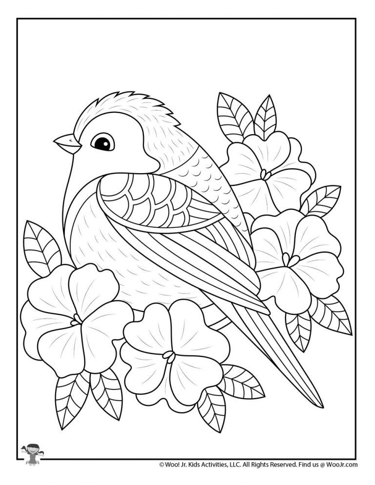 Bird Coloring In Pages