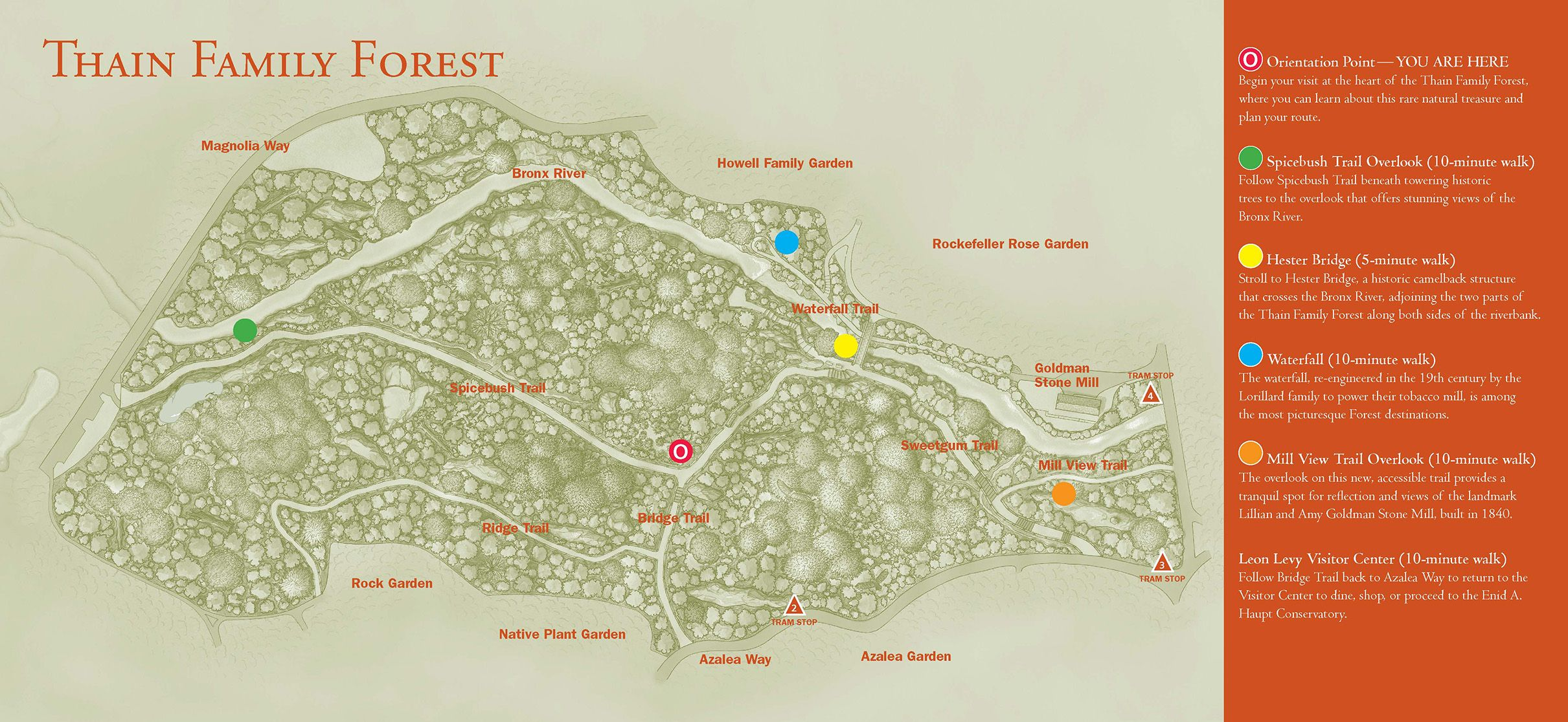 Thain Family Forest, NYBG - Forest Map | Trips, Local parks ... on