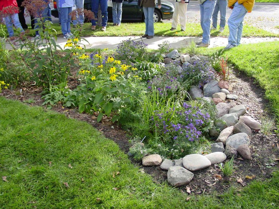 Garden Front Yard Rain Garden Design With Rain Garden Design For Homeowners  And Rain Garden Designs Photo