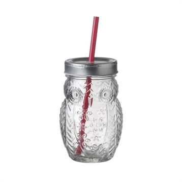 Parlane Owl Shaped Glass Drinking Jar with Straw