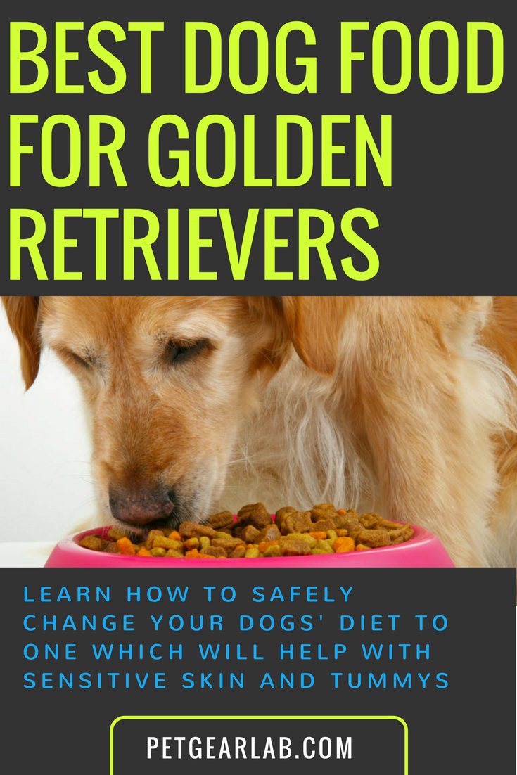 Best Dog Food For Golden Retrievers. What To Feed Smart