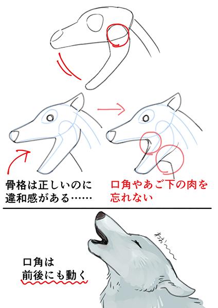 いちあっぷ On Twitter In 2021 Drawing Techniques Animal Drawings Drawing Tips