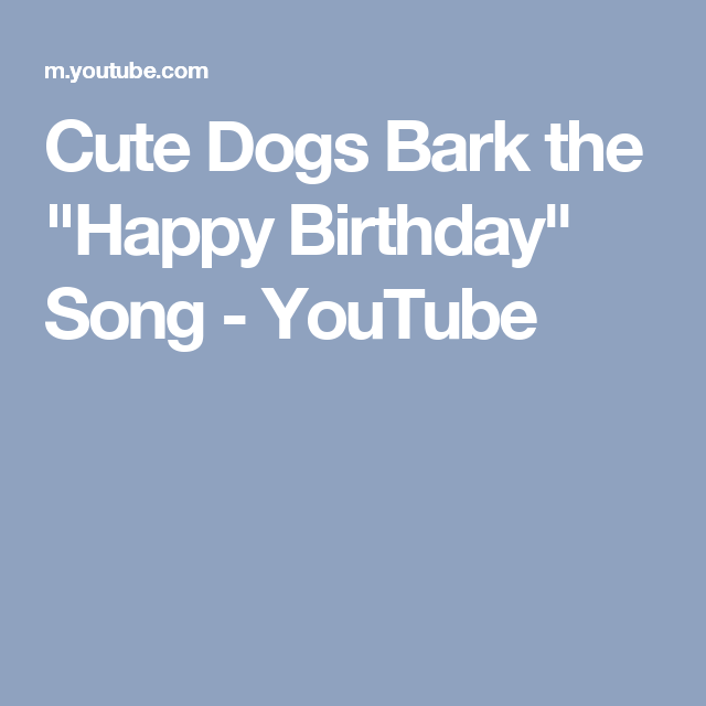 Cute Dogs Bark The Happy Birthday Song Youtube