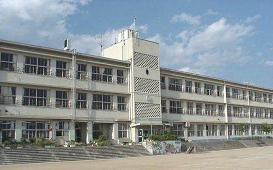 Disaster preparedness in Japanese elementary schools. Safe ...