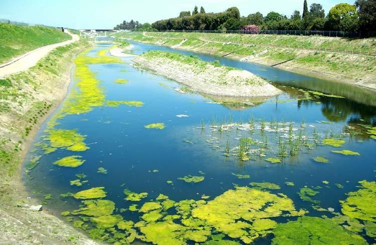 Dominguez gap wetland los angeles county department of
