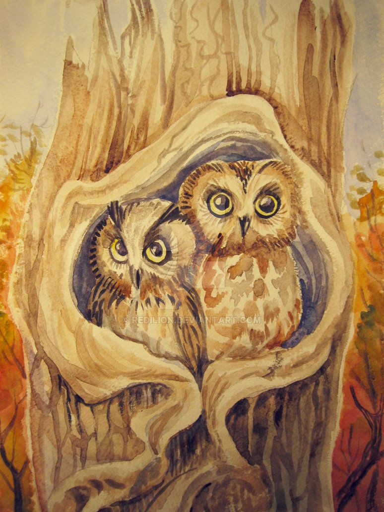 Two Owls-commissioned piece by Redilion.deviantart.com on @DeviantArt