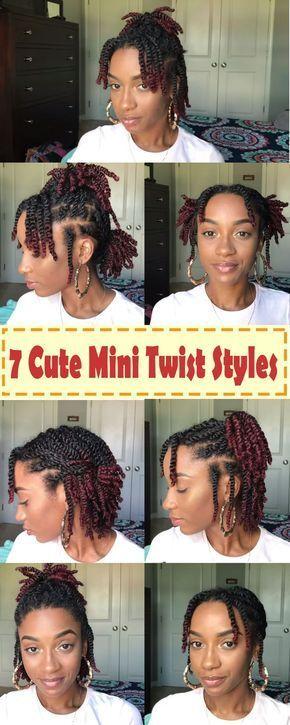 Mini Twist Braids Hairstyles