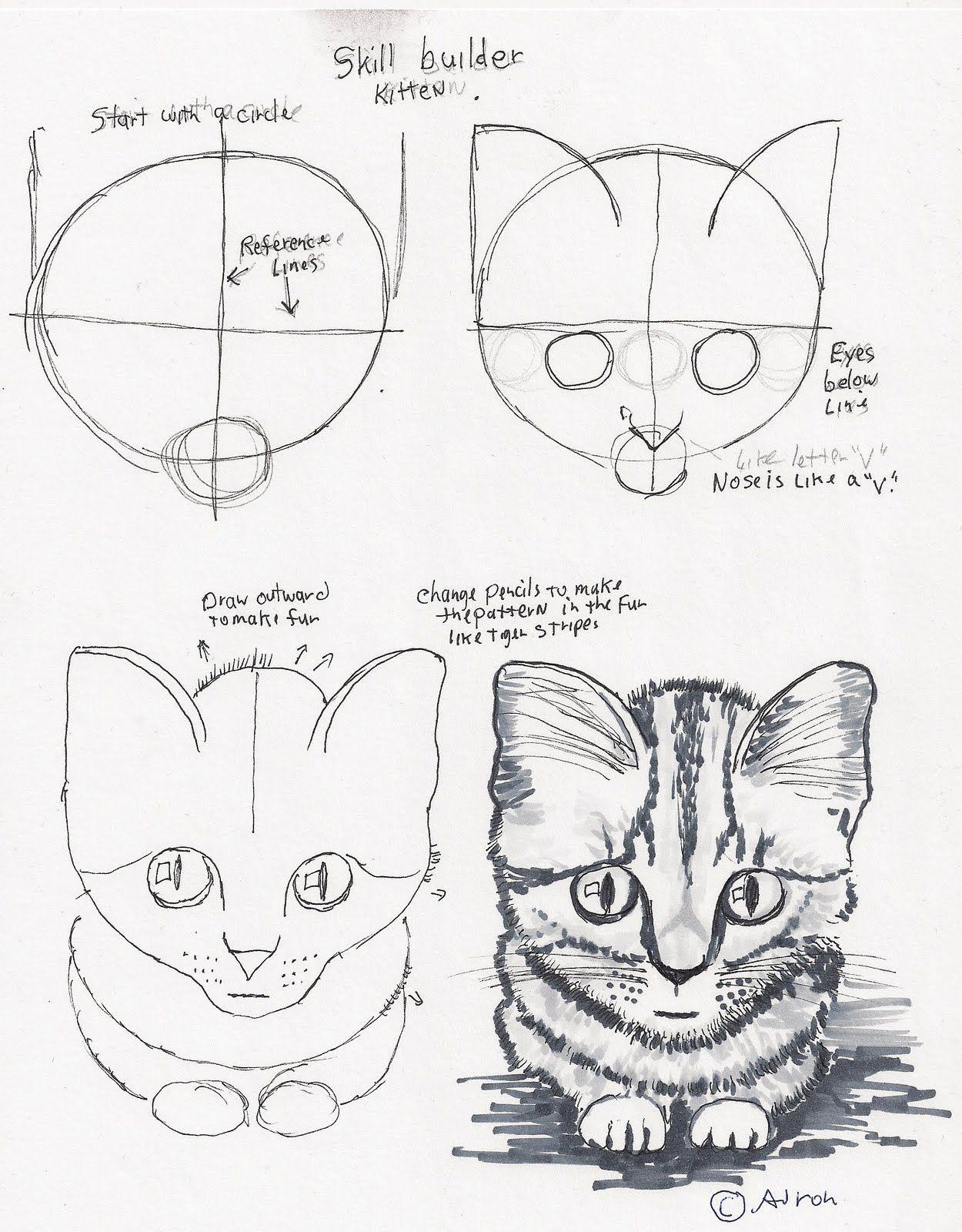 step by step cat drawing Cute drawings, Easy drawings