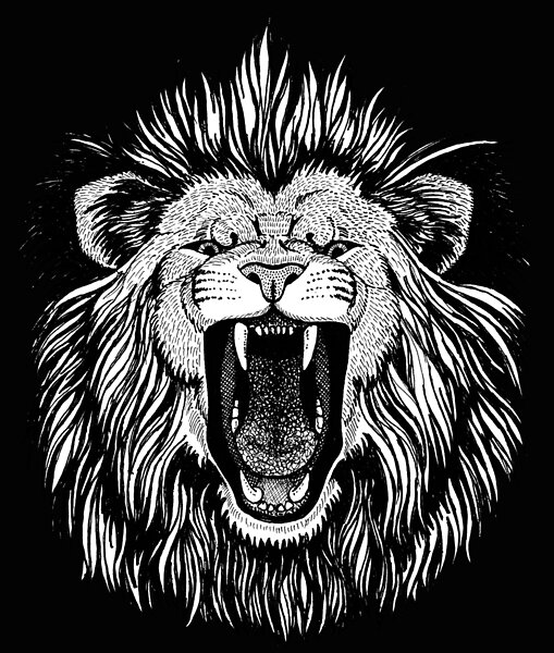 A Black And White Hand Drawing Of An Angry Lion With Its Mouth Wide Open Showing His Razor Sharp Canines A Lion Drawing Roaring Lion Tattoo Lion Face Drawing