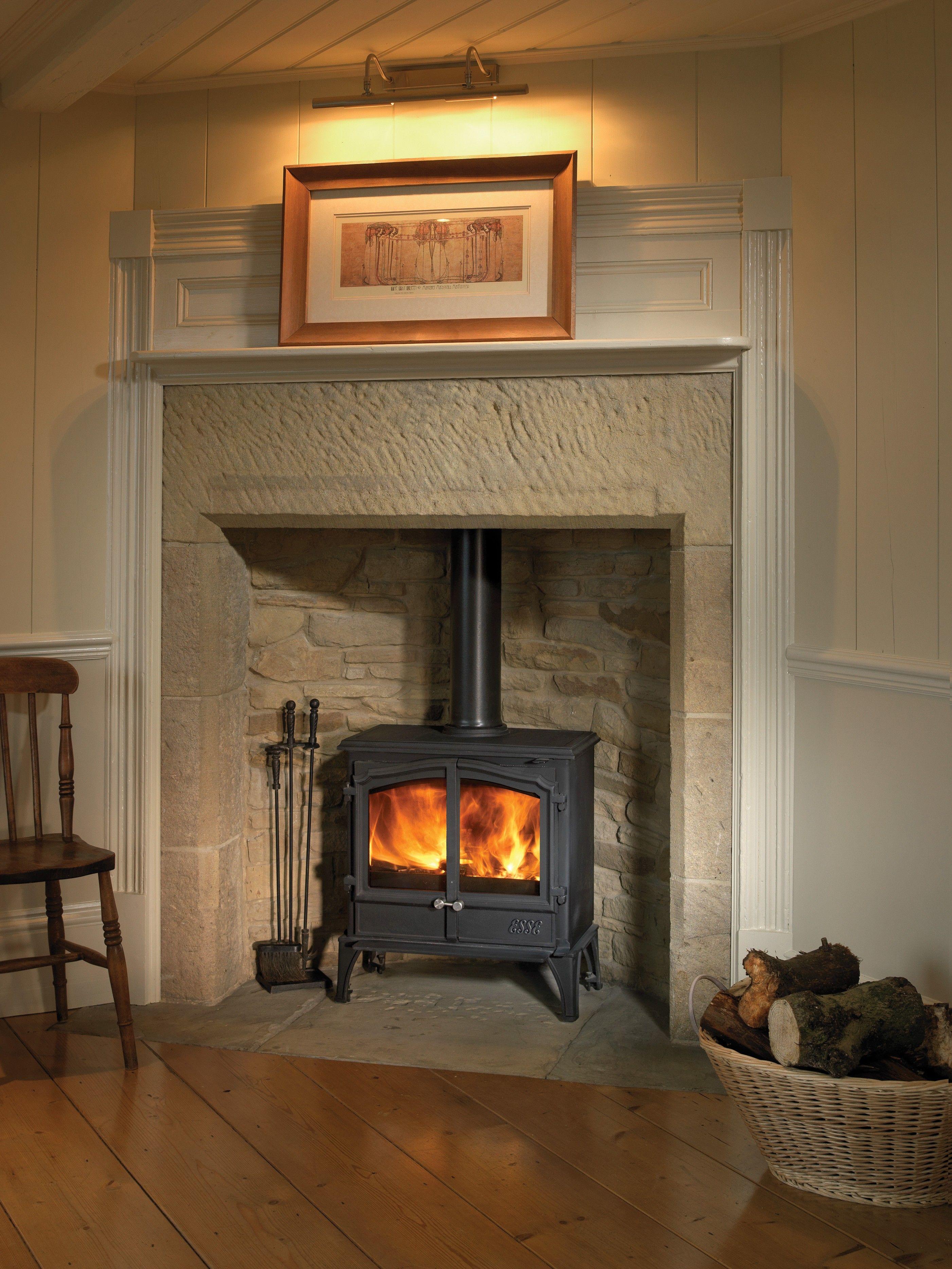 Esse 100 Double Door Multifuel Stove Wood Burning Fireplace