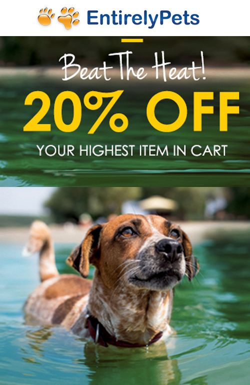 Beat The Heat! at Entirely Pets is offering up to 20