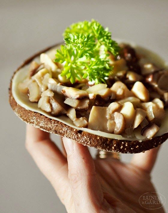 Looks so good. I love mushrooms