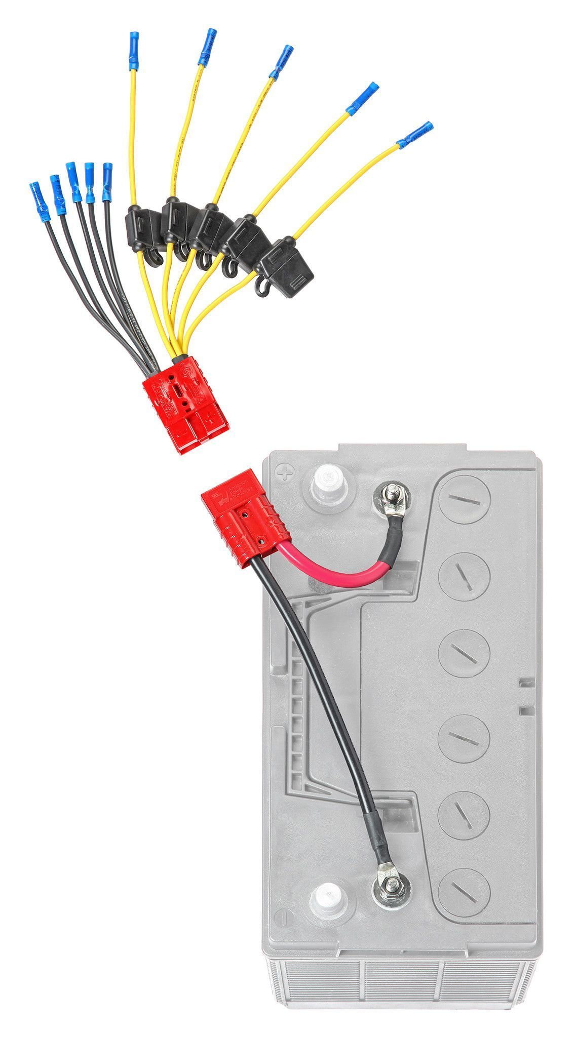 Multi Accessory (5) Fused Connection Kit (CE12VB5FK)* | Boat wiring, Boat  battery, John boatsPinterest
