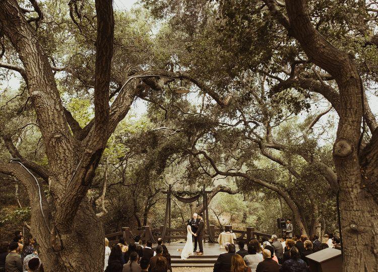 Isaiah Taylor Photography Oak Tree Wedding Orange County California Outdoor Wedding Oak Tree Wedding Wedding Locations California