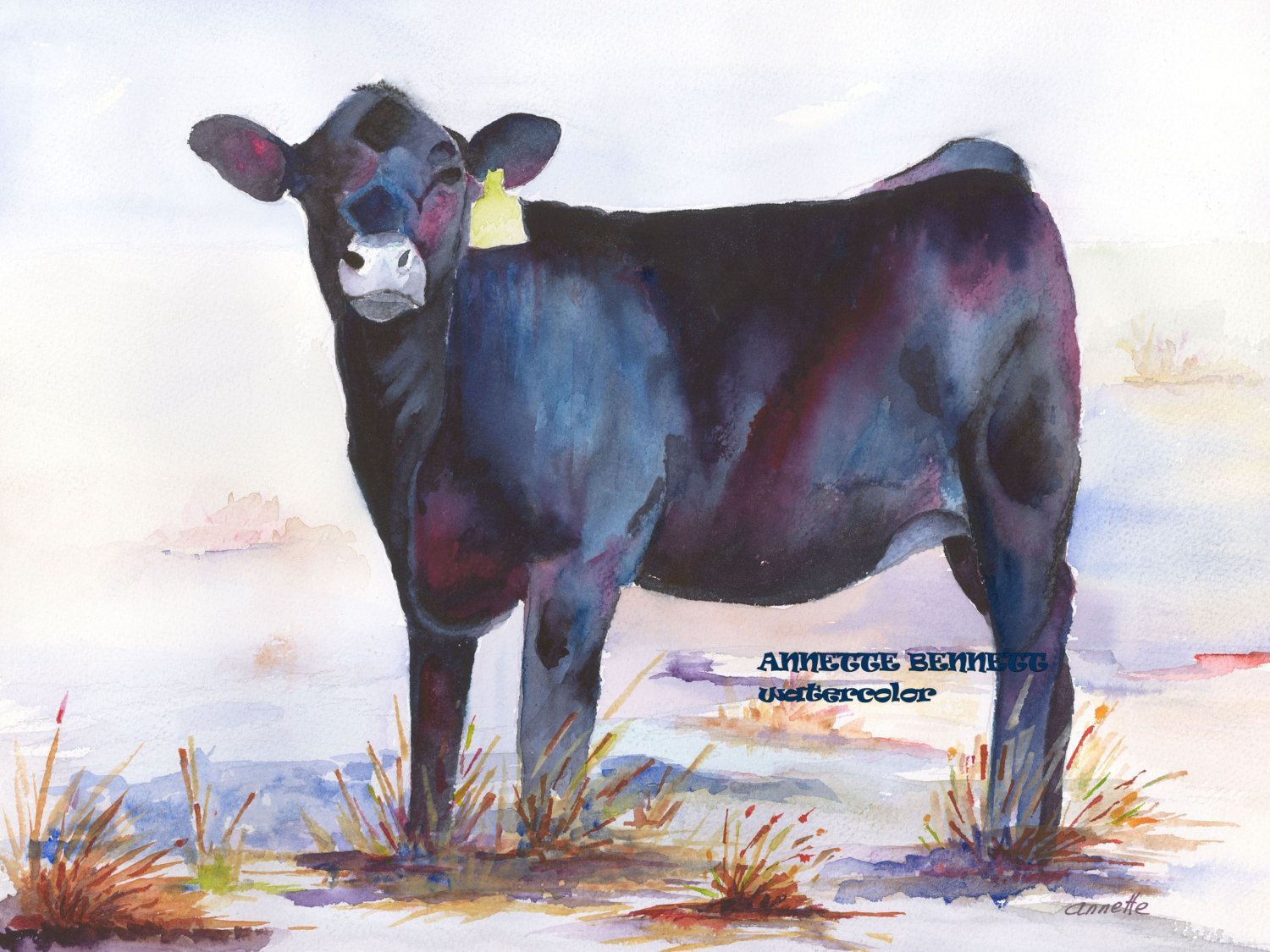 Deuce A Black Angus Calf Purple Turquoise By Annettebennett Western Paintings Cow Painting Art