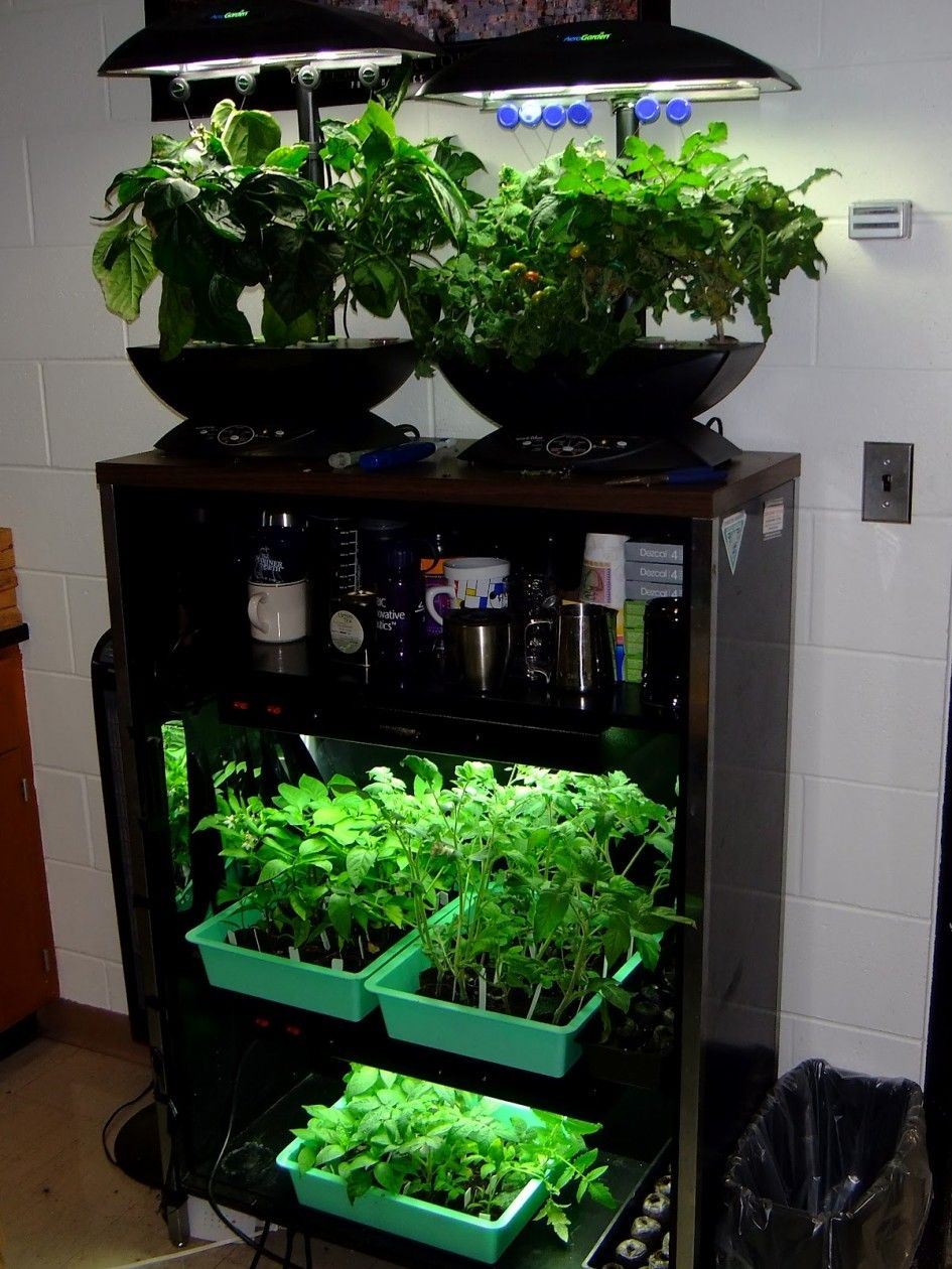 Enchanting Indoor Herb Garden Cabinet with Under Counter Led Light Fixtures and Diy Plywood