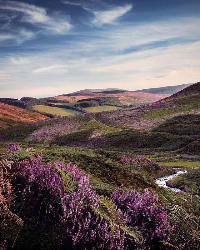 White Meldom, Scottish Borders, Scotland