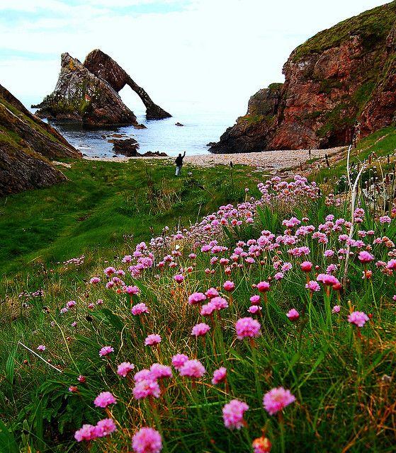 The national animal of Scotland is the unicorn. Scotland is the honeymoon destination!