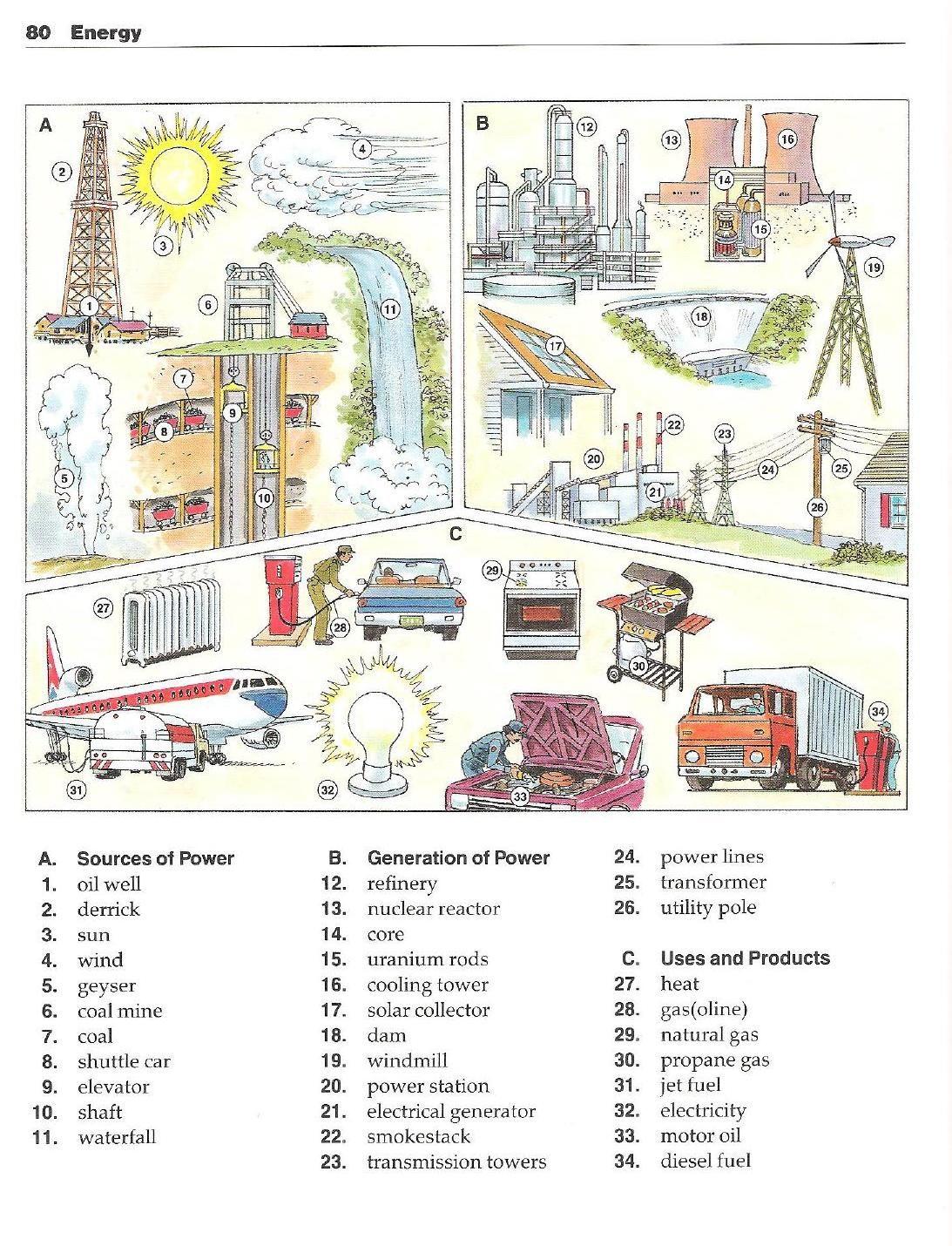 Oxford English Picture Dictionary Diccionario En Ingles