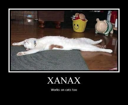 Funny Xanax Memes : Pin by andrea neuman on for shits n giggles pinterest cannabis