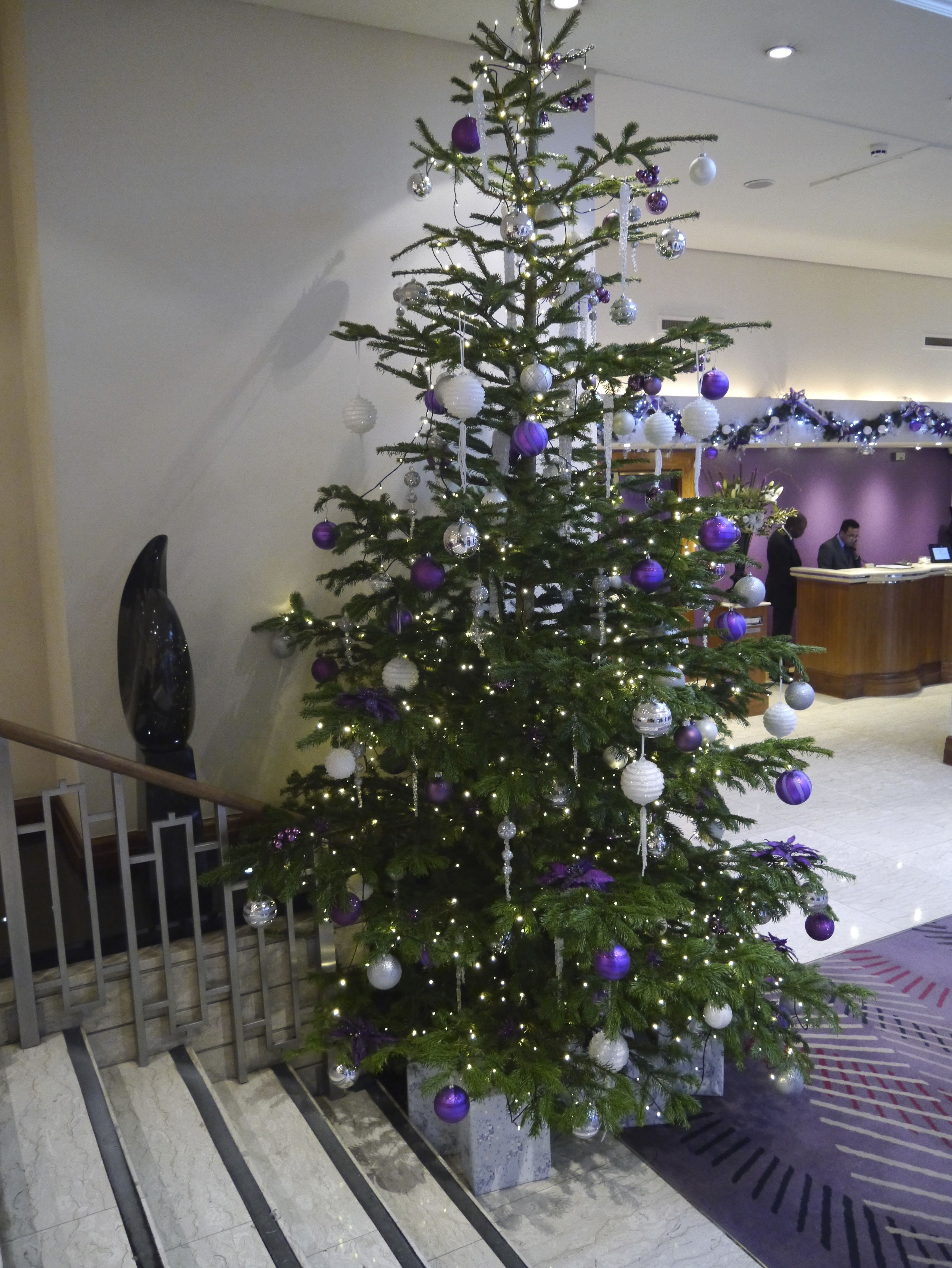 Christmas tree in all it's glory at the Cavenish Hotel