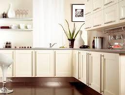 birch modern kitchen cabinets - Google Search