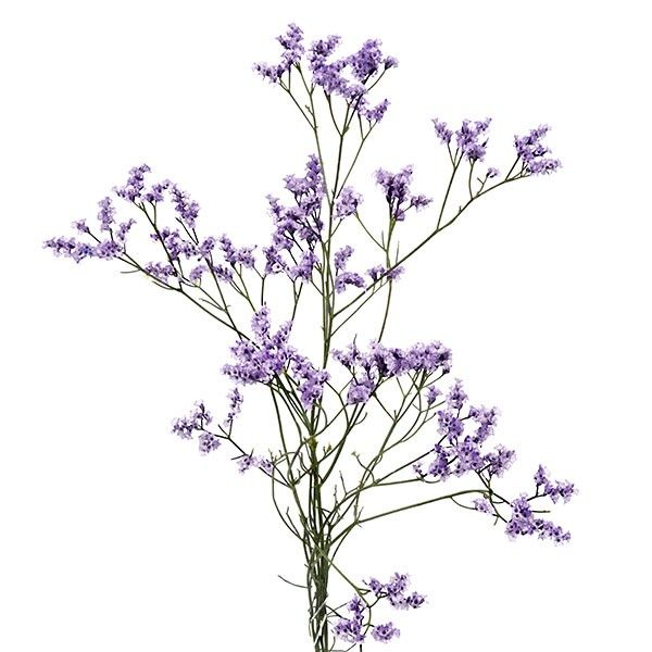 Purple Caspia Bud Vases House Plants Decor Lavender Wedding Plant Decor