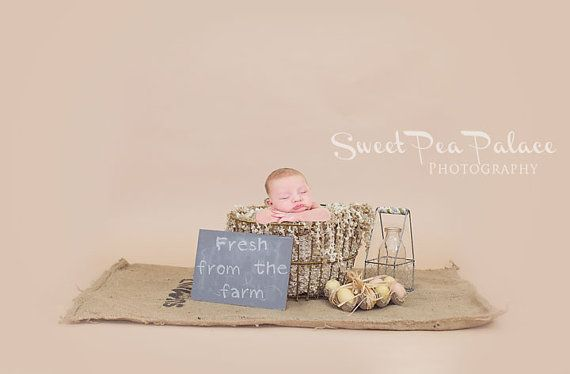 Instant Download DIGITAL BACKDROP for Photographers -Rustic Egg Basket #backdropsforphotographs