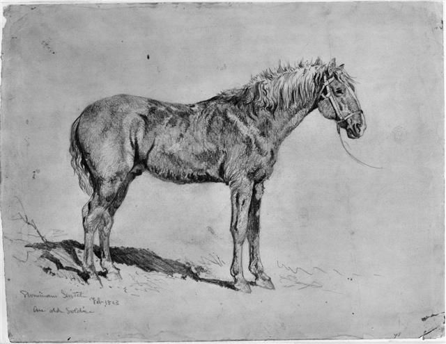 """Edwin Forbes Civil War Drawings   """"An Old Soldier"""""""