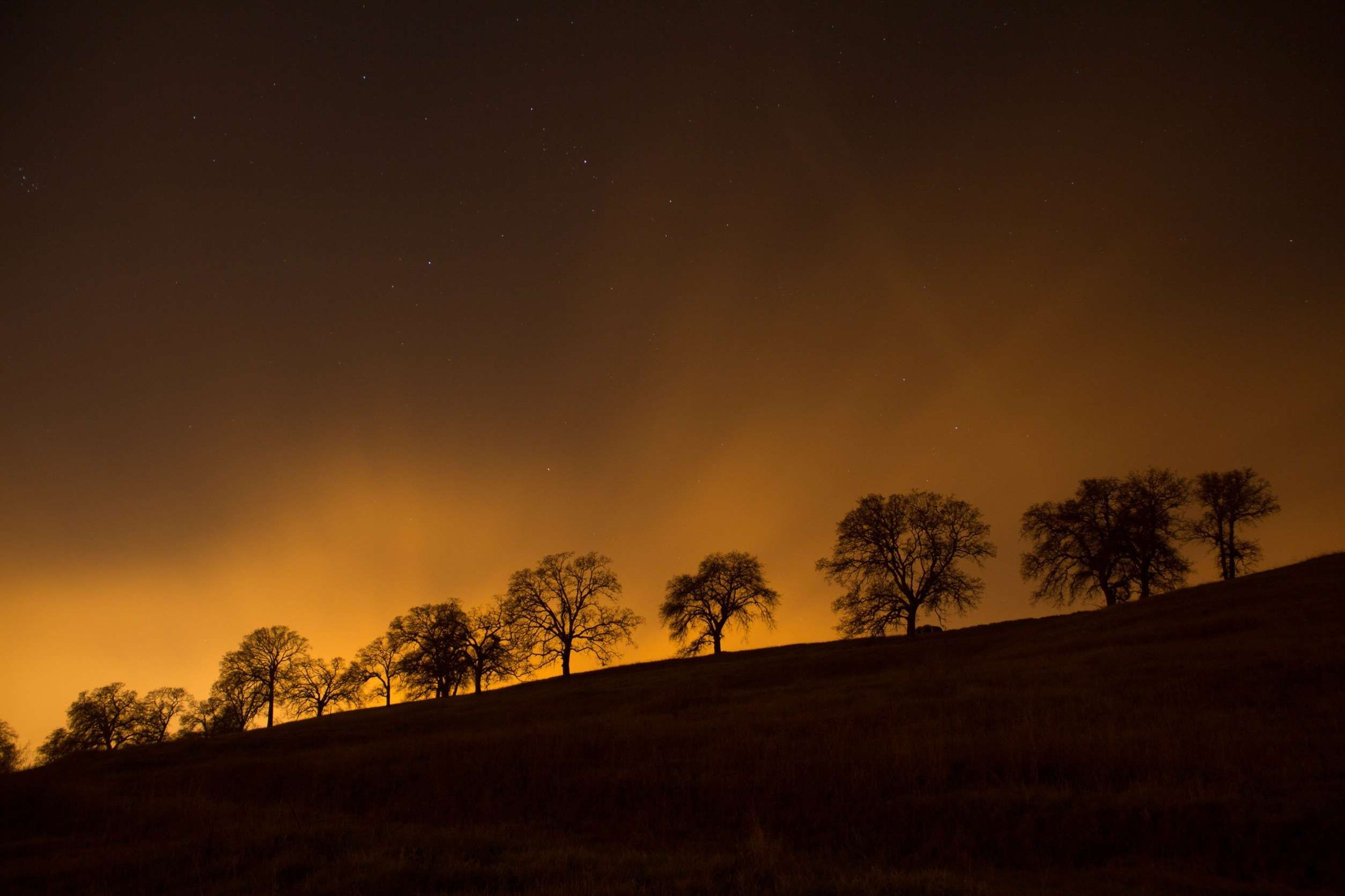 #dusk #night #silhouette #sky #stars #trees