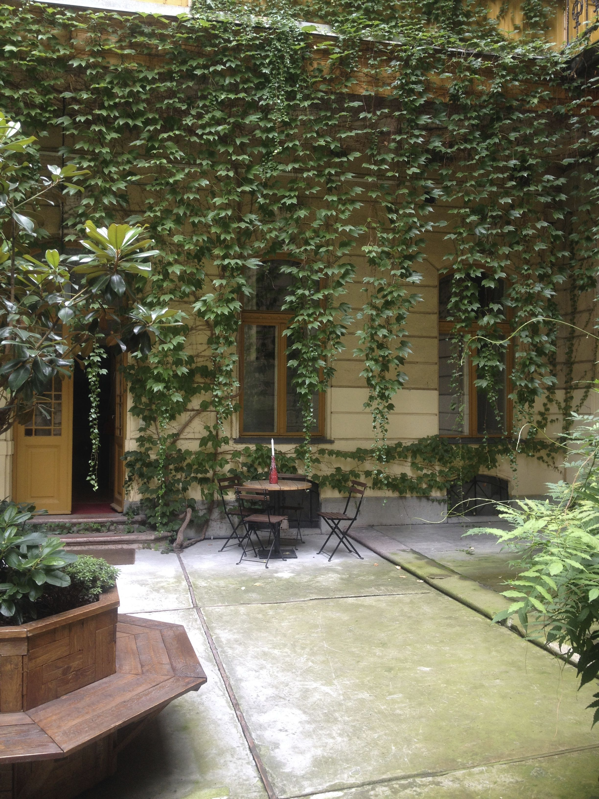 Hanging Boston Ivy courtyard | URBAN GARDENS | Pinterest | Gardens