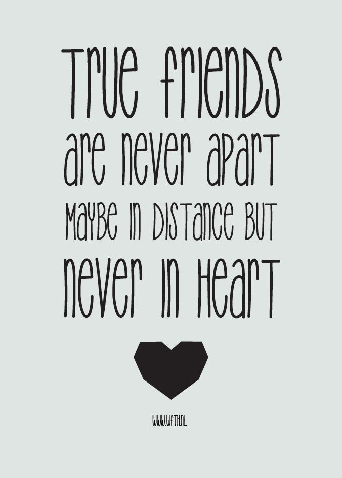 Quotes About Friendship Distance Unique Top 20 Cute Friendship Quotes  Friendship Quotes Friendship And