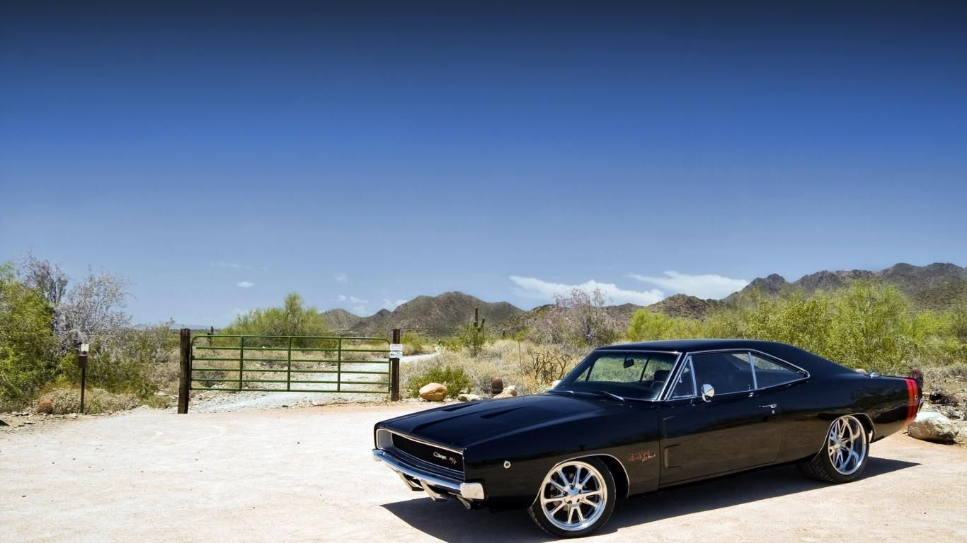Dodge Charger Rt Dodge Cars Free Hd Wallpapers With Images