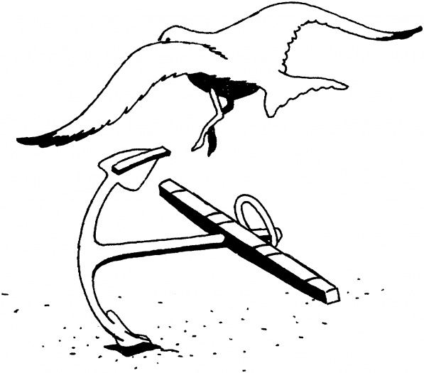 seagull coloring pages | Seagull and anchor coloring page | applique ...