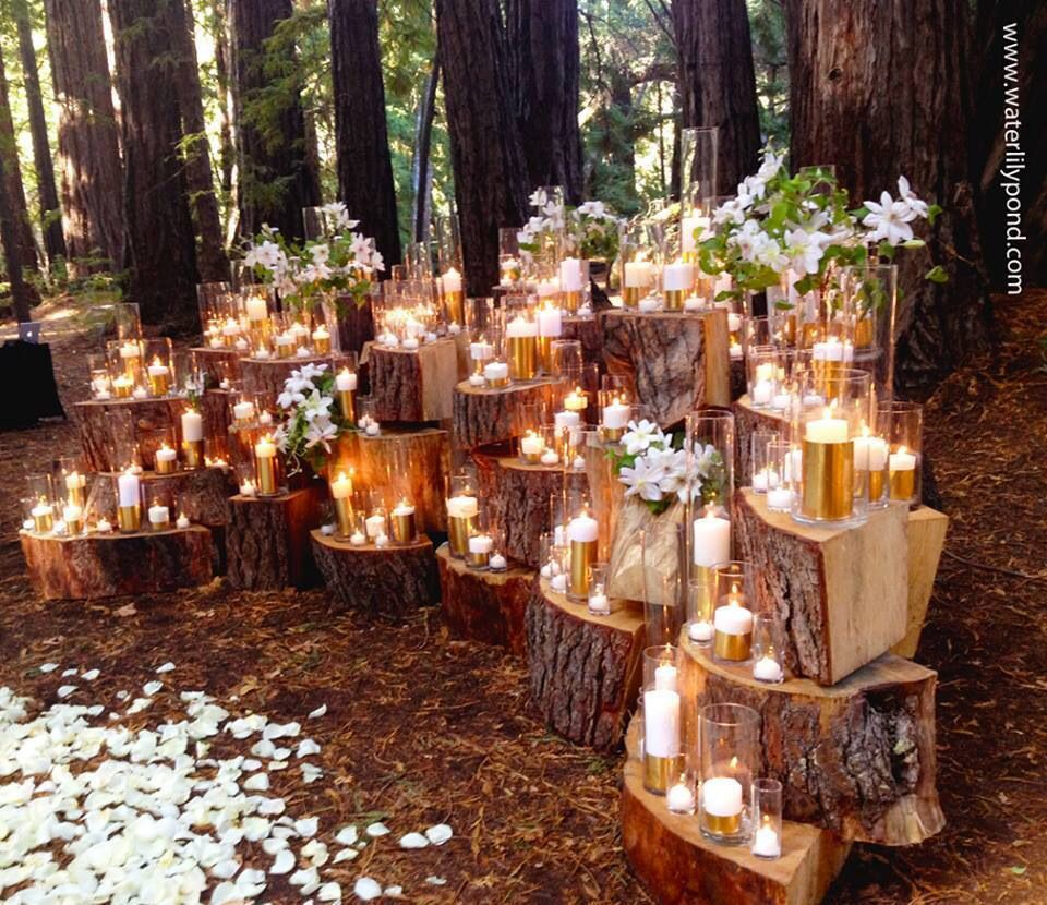 Pin By Madeline Neal Bakewell On Candles Woodland Wedding Decorations Budget Friendly Wedding Outdoor Wedding
