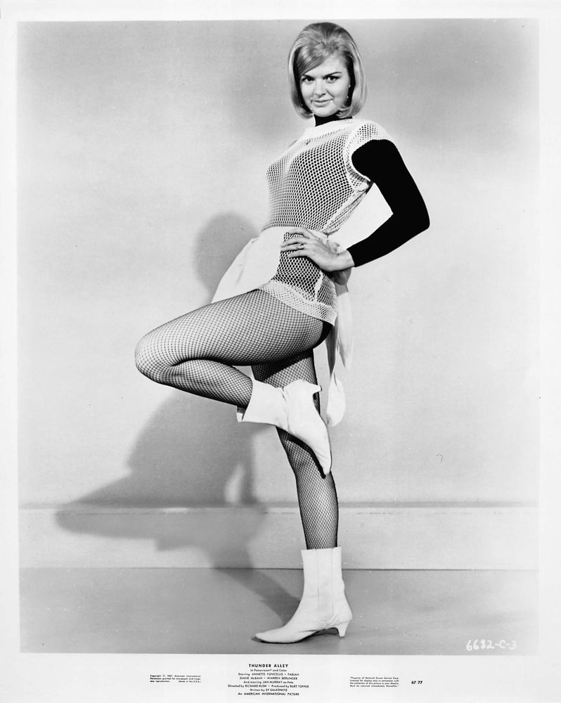 LUREE HOLMES vintage sexy leggy busty 1967 cheesecake pinup photo Thunder Alley