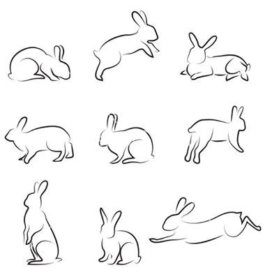 image result for small bunny drawings