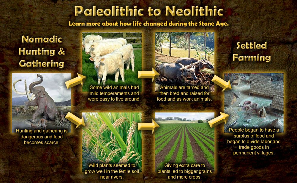 Agricultural Revolution About 12000 Years Ago Big History