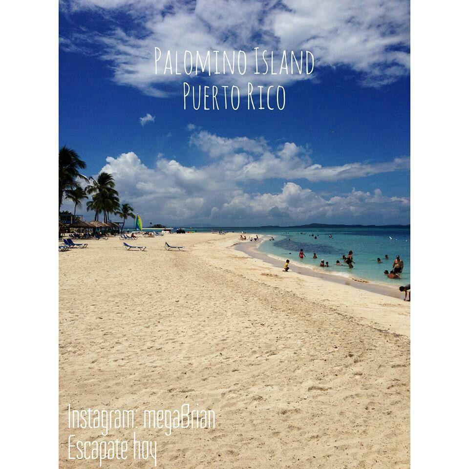 Palomino island, PR